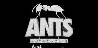 ants metropolis ibiza