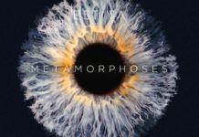 Estiva Metamorphoses